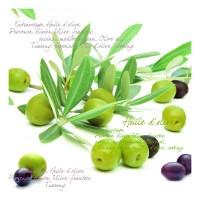 Olives Servietten 20 Stk. 33x33 cm
