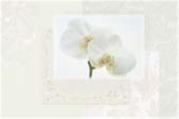 Chachemire White Tischset, 45x30 cm