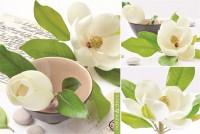 Nature & Deco Magnolia Tischset 45x30 cm