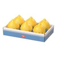 6er Set Mechanischer Zitronen Timer